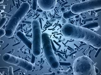 UK Health Officials Aim to Stop the Emerging Superbug <I>Mycoplasma Genitalium</i>