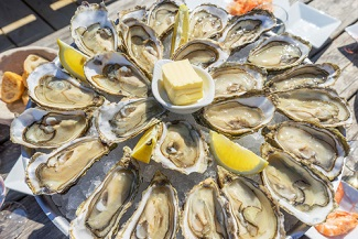 Gastrointestinal Illness Outbreak Tied to Raw Oysters