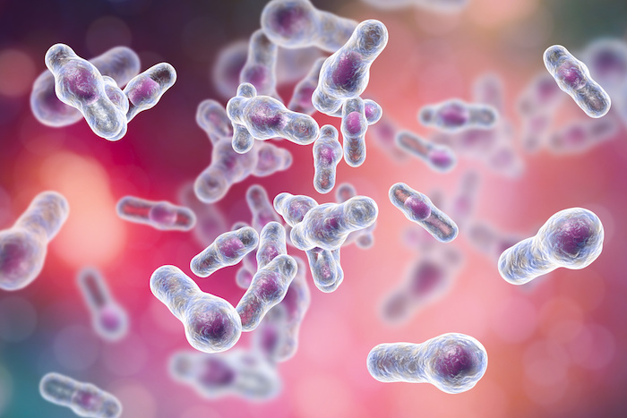 IDSA & SHEA Release Updated Clinical Practice Guidelines for <i>Clostridium difficile</i> Infection
