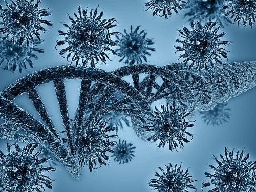 Both Viral and Human Genetics Influence HIV Disease Progression