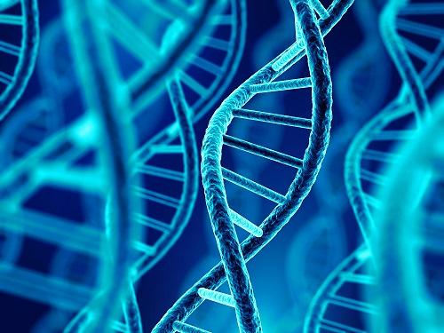 Epigenetics Mediates Sporulation and Pathogenesis in <i>C Diff</i>