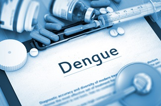 Local Transmission of Dengue Confirmed in Florida