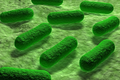 California Patient Dies with Superbug Infection