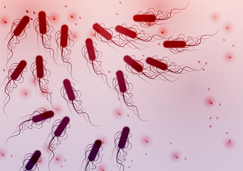 After New Jersey DOH Reports <i>E. coli</i> Outbreak, 10 More States Identified
