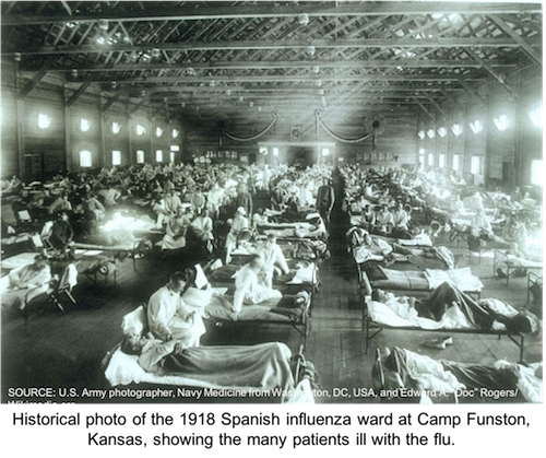 The Spanish Flu Pandemic 100 Years Later: Are We Ready for Another One?