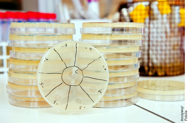 Antimicrobial Resistance: Forging A New Strategy Against an Old Threat