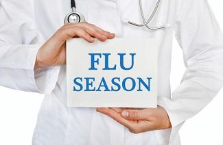 A Summary of the 2018-19 US Flu Season