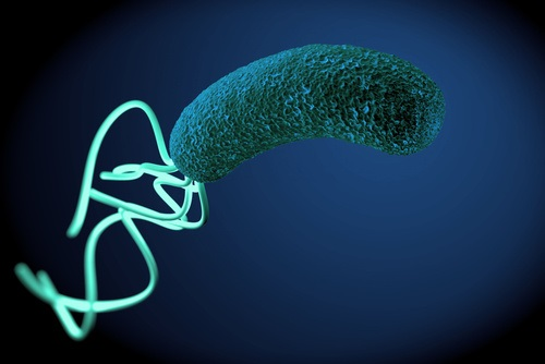 Antibiotic-Resistant <i>H Pylori</i> is on the Rise in Europe