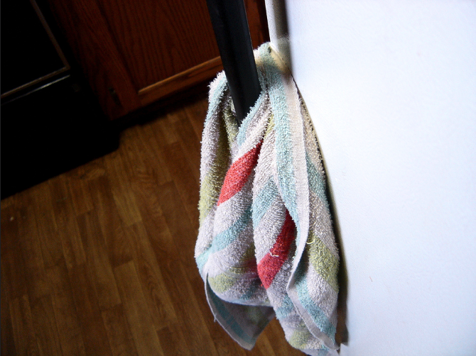 Kitchen Towels Harbor Pathogens Responsible for Food Poisoning