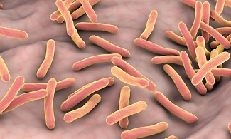 CDC Updates Recommendations of 3HP for Latent TB Infections