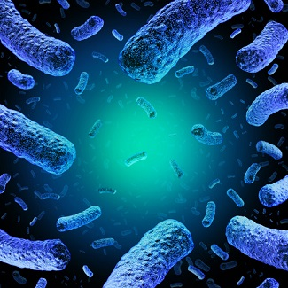 Novel Bacteriocin a Promising New Treatment for Resistant <i>Listeria monocytogenes</i>