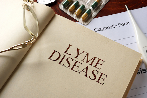 Top Lyme Disease News of 2017