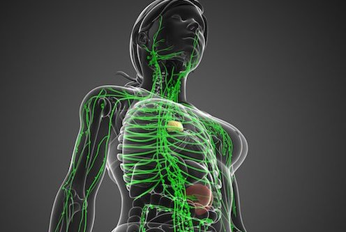 Impact of MRSA on Lymphatic Function Studied by MGH Investigators