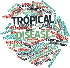 Neglected Tropical Diseases: Looking Toward 2030