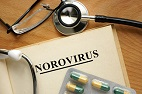 NoroCORE and the Perfect Pathogen: USDA-NIFA Efforts to Control Norovirus