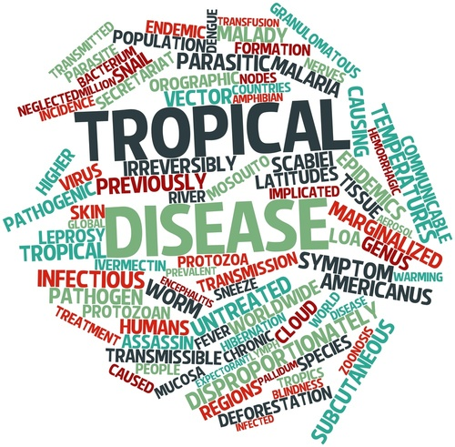 Exploring the FDA's Tropical Disease Priority Review Voucher