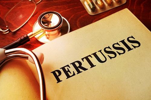 Study Finds Pertussis Vaccines
