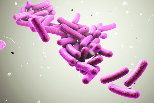 Phase 3 Clinical Trial of Historic Microbiota Treatment for <i>C Diff</i> Completes Enrollment