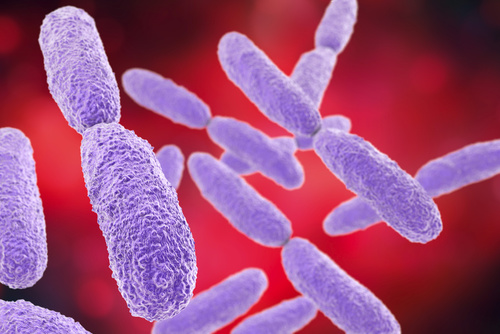 Developing an Alternative Approach for Treating MDR <i>Klebsiella pneumoniae</i>