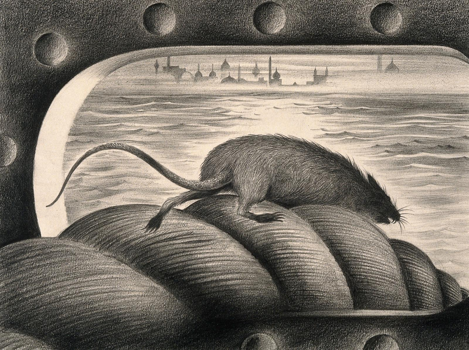 Dis-Ease still: Rat leaving the mooring rope of a ship (Albert Lloyd Tarter illustration, produced for an unfinished Hollywood educational film in the 1940s, Wellcome Collection).