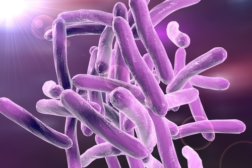 New Approaches to Understanding TB Can Help Inform Development of Better Vaccine
