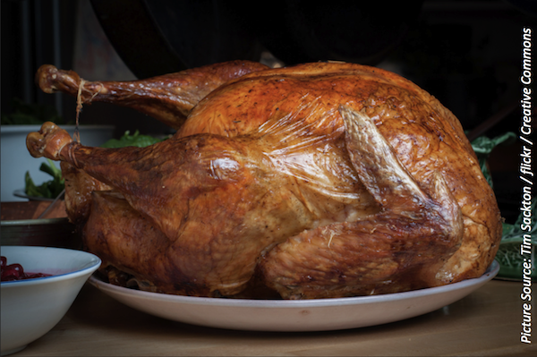 Raw Turkey Responsible for Multidrug-Resistant <i>Salmonella</i> Outbreak Spanning 26 States