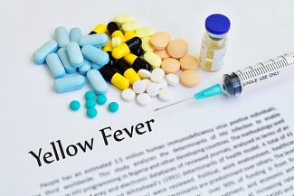 Fractional Yellow Fever Vaccine Dose Remains Protective After a Decade