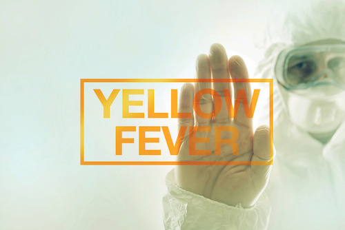 Yellow Fever: A Transcontinental Threat?