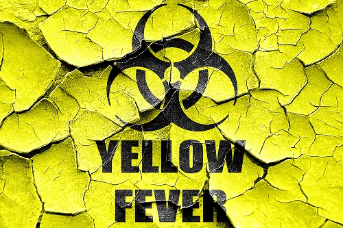 Brazil Yellow Fever Outbreak Persists Although Number of Cases Has Stabilized