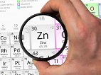Consuming High Levels of Zinc Could Make You Susceptible to <i>C. Difficile</i>