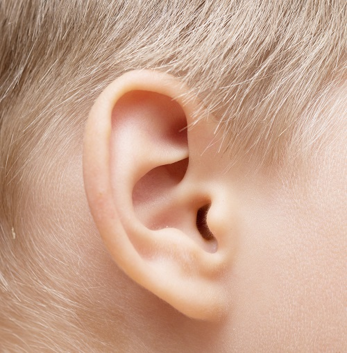 Increase in Pneumococcal Vaccines Leads to Decrease in Ear Infections in Children