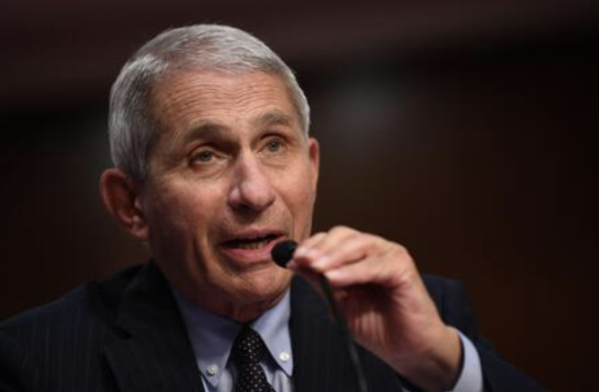 Fauci Testifies on Unifying Coronavirus Response at Hearing