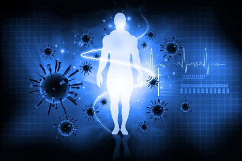 New Studies Expand Understanding of the Human Immune System