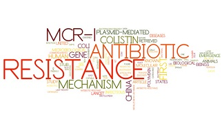 New Study Detects Increase in MCR-1 Positive Multidrug-Resistant Bacteria in Humans