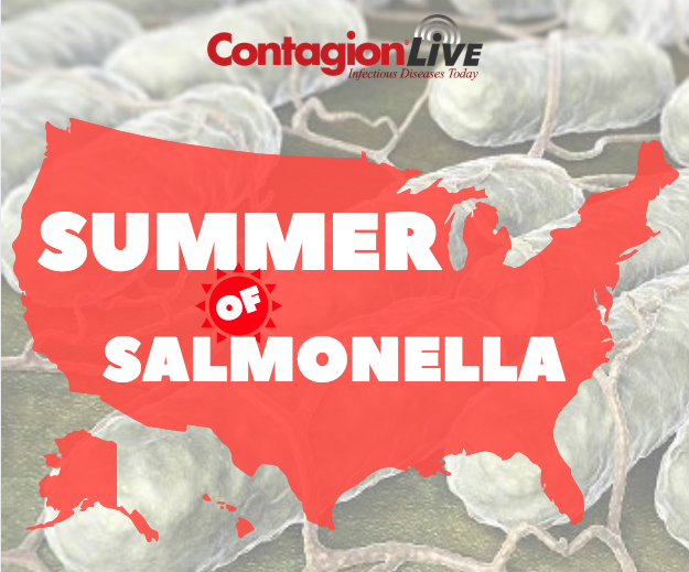 The Summer of <i>Salmonella</i>: Outbreaks You Should Know